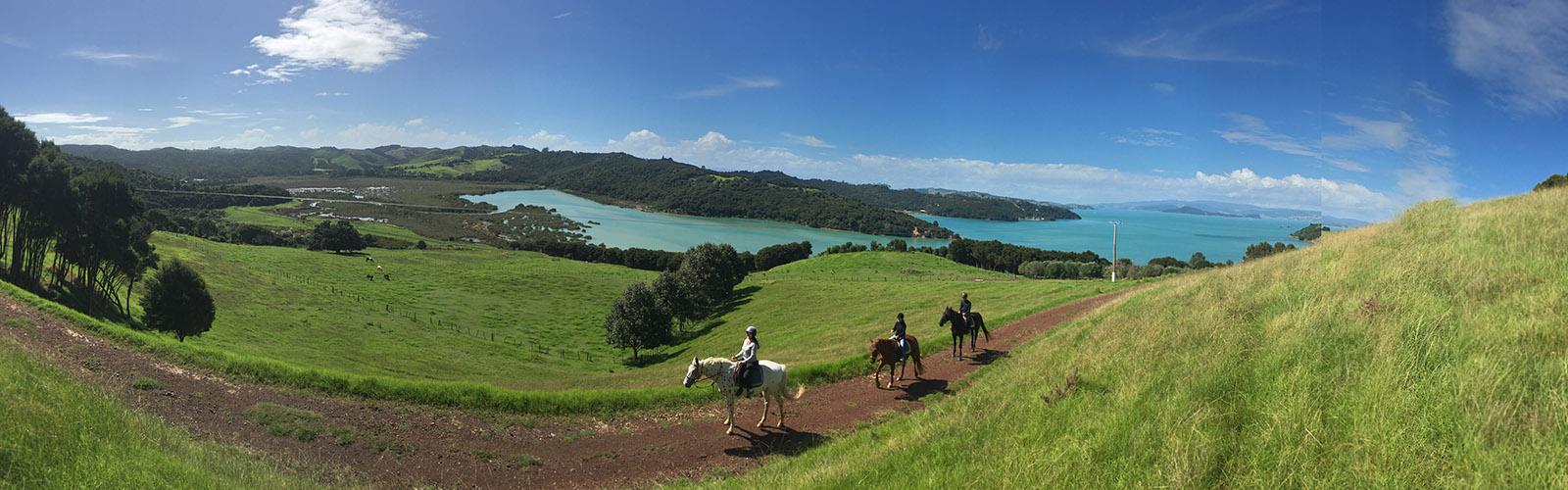 Waiheke Horse Tours Te Matuku Bay